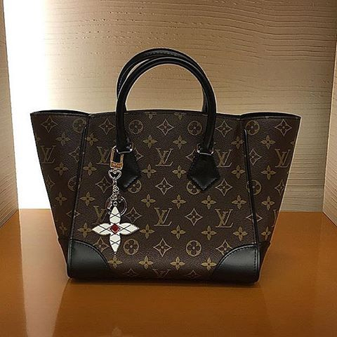 Louis Vuitton Phenix Bag