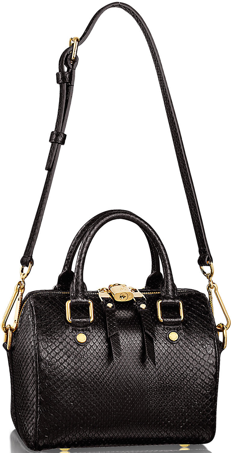 previewing louis vuitton speedy python bag blog for best