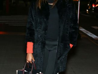 alicia-quarles-celine-luggage-tote