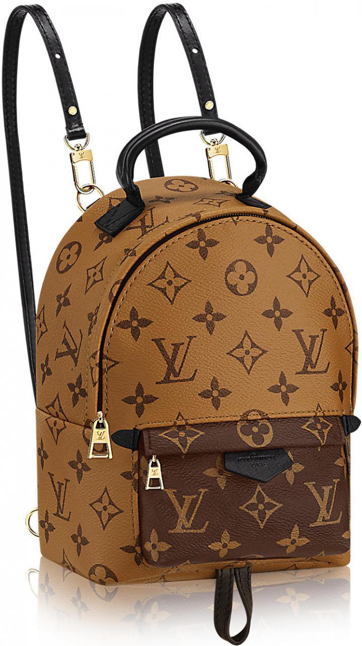 Louis Vuitton Monogram Reversed Palm Springs Backpacks