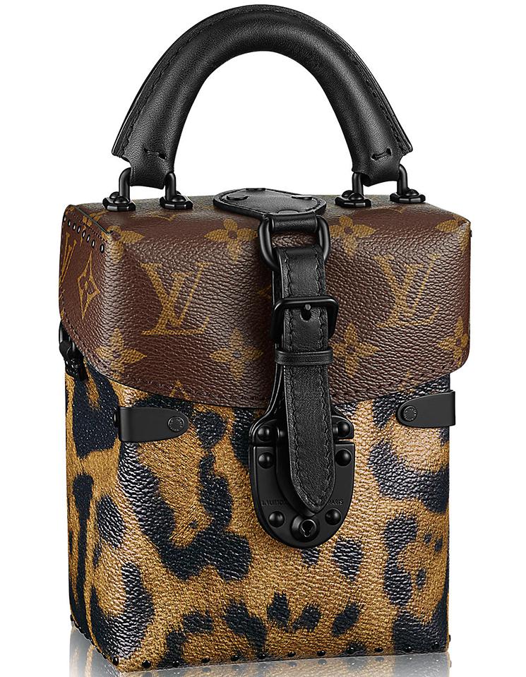 Louis Vuitton Reversed Monogram Camera Box Bag